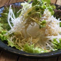 大根サラダ  340円